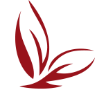 Logo Mobilehome Böllinger in St. Tropez